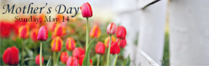mothers day banner for web
